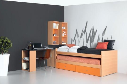 Composition avec 2 couchages et 2 grands tiroirs. CK993
